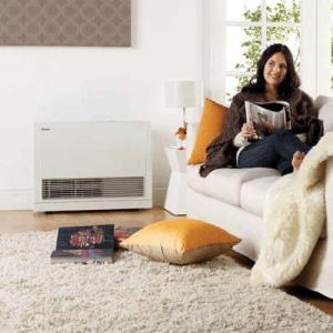 Rinnai Gas Energy Saver